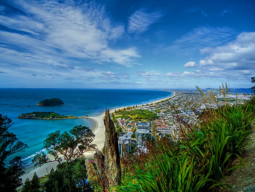 A view from the top of Mt Maunganui in Tauranga, New Zealand; the city can be seen below, fringed by a sandy beach leading to a blue-green sea.