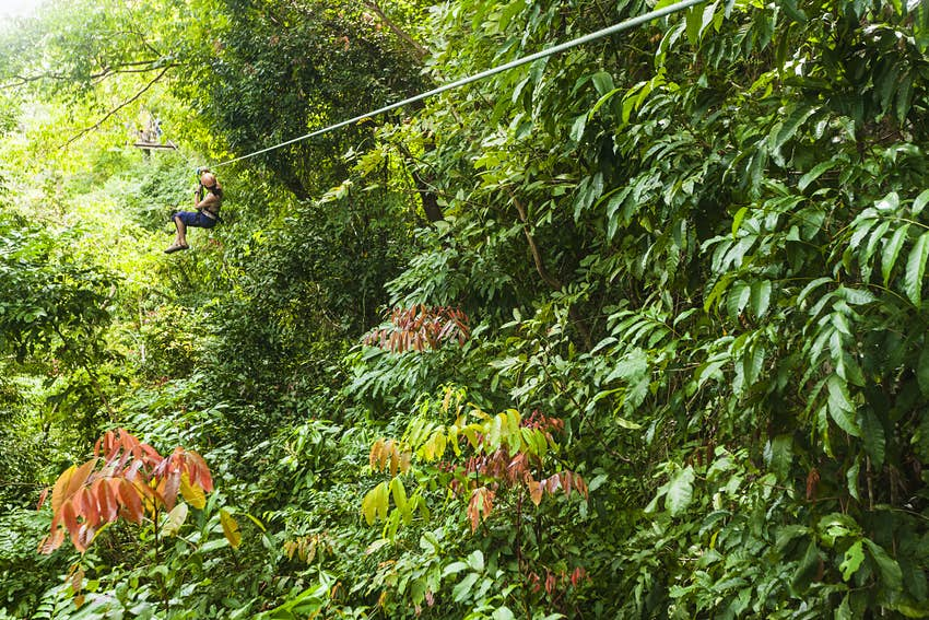 A young lady zooms along a zipline through the forest towards a platform in the distance