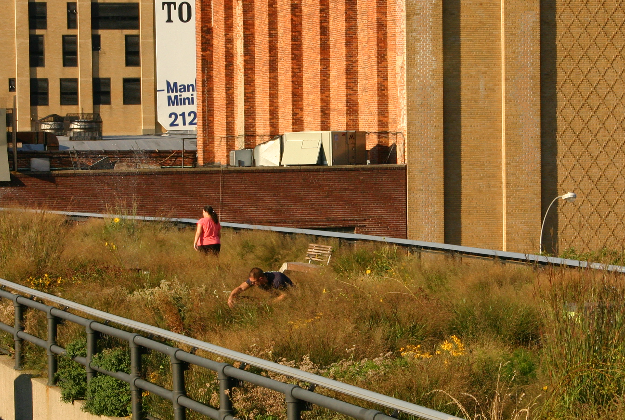 New Yorkers: take the High Line for better health