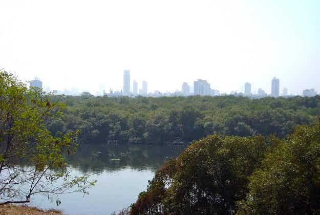 Mumbai suburbs a hotbed of hooch production