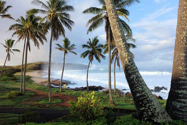 Hawaii sets aside millions to fund better broadband for tourist appeal