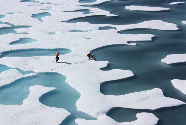 Record Arctic temperatures reported in 2015