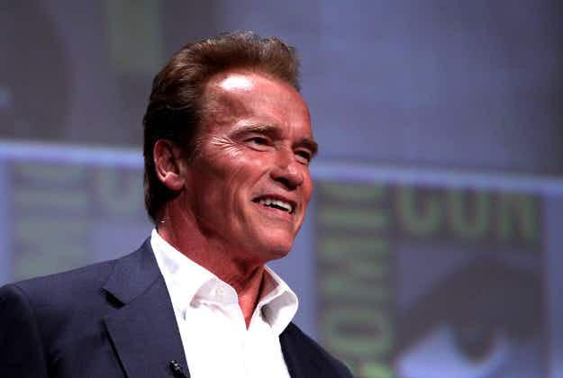 Schwarzenegger grants dying Austrian last wish
