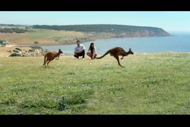 Australia Day launch for latest tourism campaign