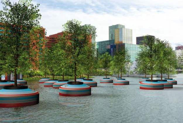 Rotterdam set to go green with a floating forest