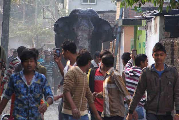 Enraged elephant runs amok in West Bengal