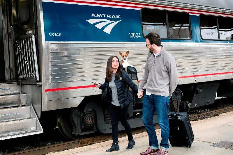 Amtrak expands pets program across USA
