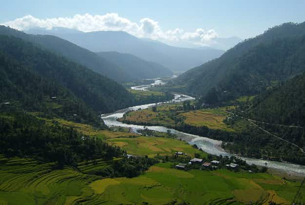 Bhutan gets world record for tree planting