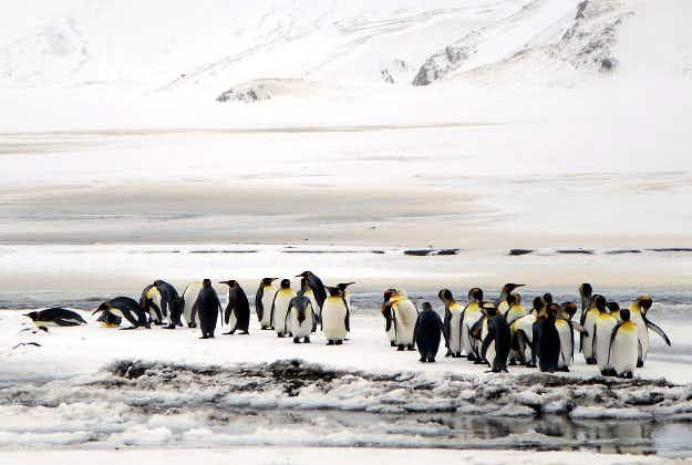 Vessel navigates to furthest point ever in Antarctica