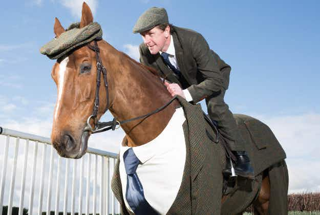 Now there's a photo finish: horse dons tweed suit ahead of tomorrow's Cheltenham Festival