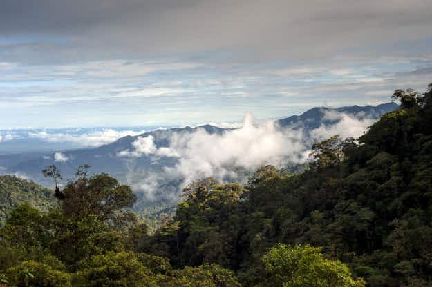 Peru and Ecuador to establish South America's first binational biosphere reserve