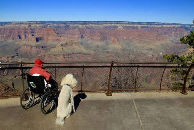90 year-old goes on epic road trip with her dog Ringo