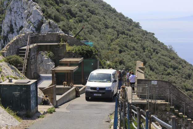 Gibraltar bans foreign registered cars from entering the Upper Rock to help save environment