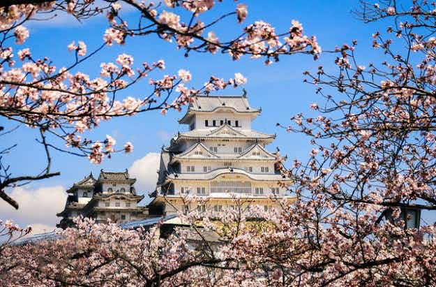 Japan's Himeji Castle rises to the top of the popularity list with record visitor numbers