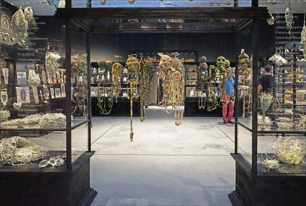 Canberra's National Gallery showing full Australian exhibition from 2015 Venice Biennale