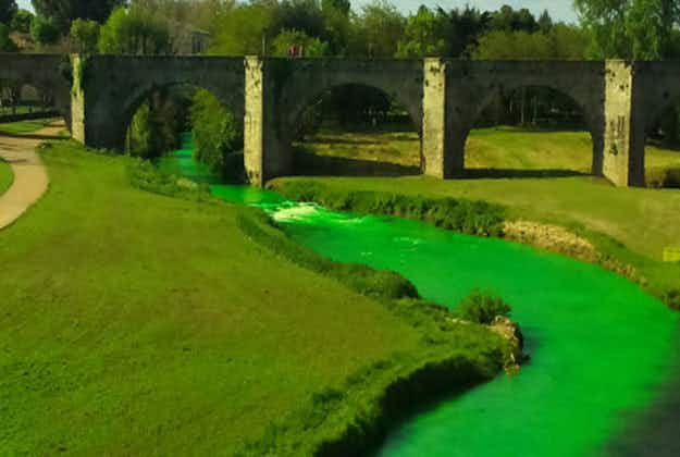Conservationist group dyes French rivers fluorescent green to alert public on environment