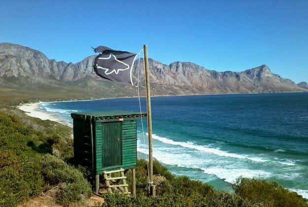 Cape Town's Shark Spotters initiative wins major African tourism award