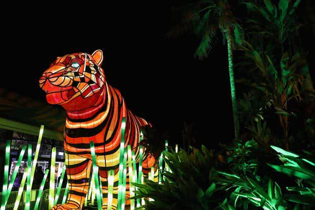 Australian zoo houses stunning illuminated trail of endangered animal sculptures