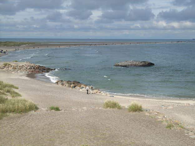Danish coastal and inland waters at their cleanest since records began