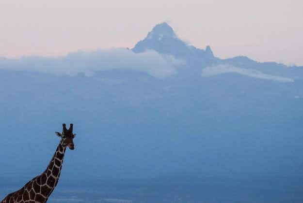 The sky's the limit in Africa as plans develop for a cable car on Mount Kenya