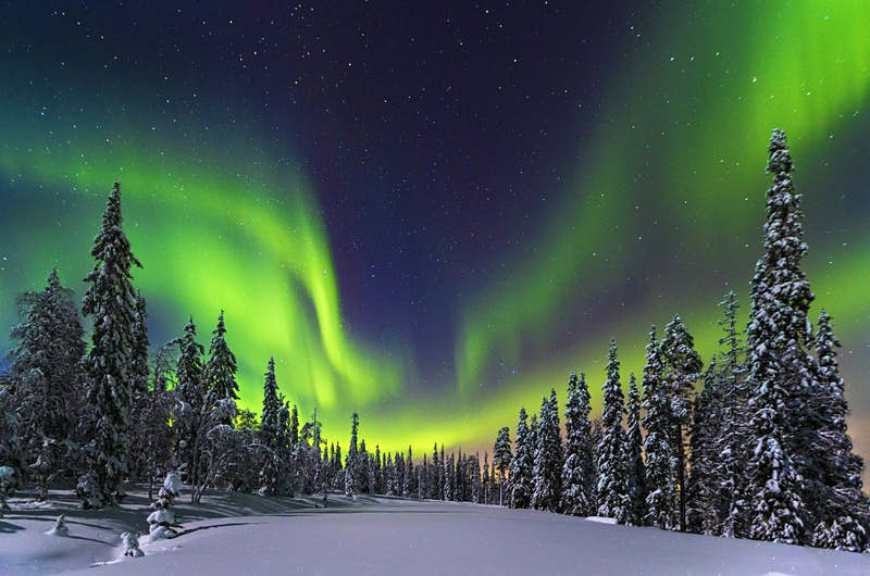 Aurora Borealis over a forest in Finland
