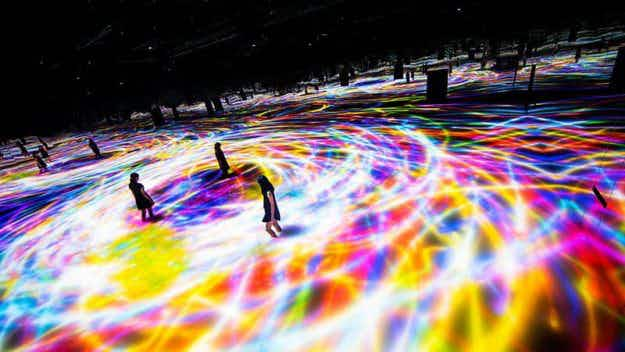 You control this spectacular new digital art exhibition opening in Tokyo
