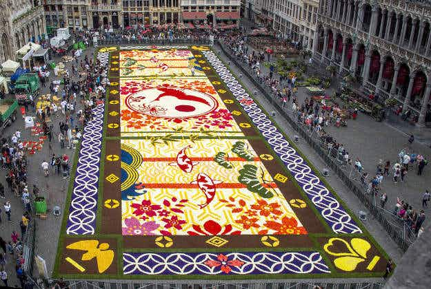 Blooming massive Flower Carpet unveiled in Brussels' Grand Place