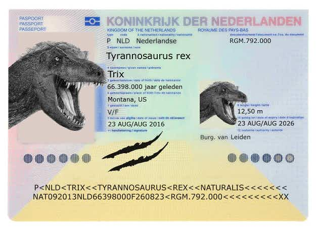 T. rex fossil issued with dinosaur passport for US to Netherlands flight