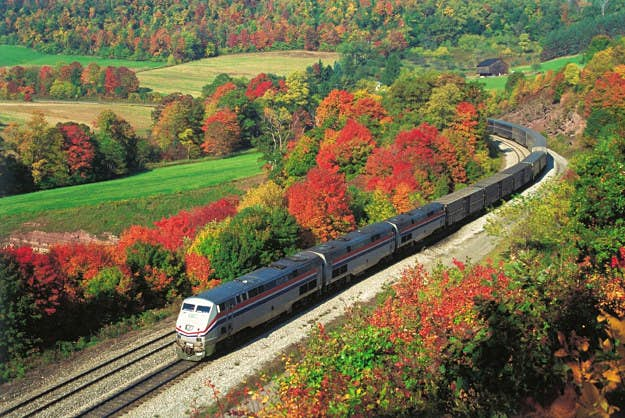 Enjoy a train journey through eastern USA with Amtrak's Autumn Express