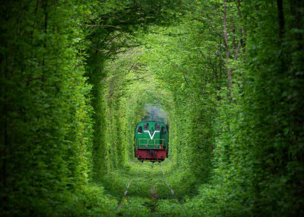 Photographer shares origins of Ukraine's mysterious and beautiful Tunnel of Love