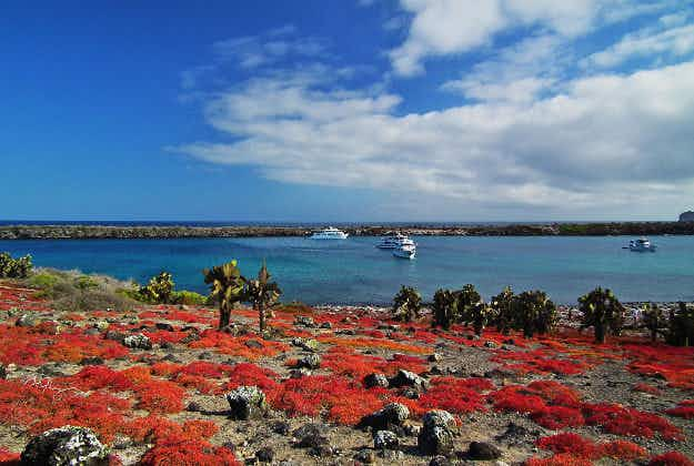 Scientists working on sustainable tourism plan for Galapagos Islands