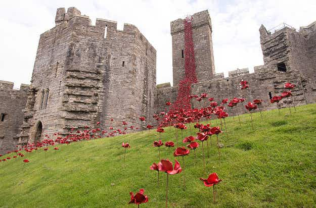 In Pictures: poppies cascade down a Welsh castle to commemorate WWI