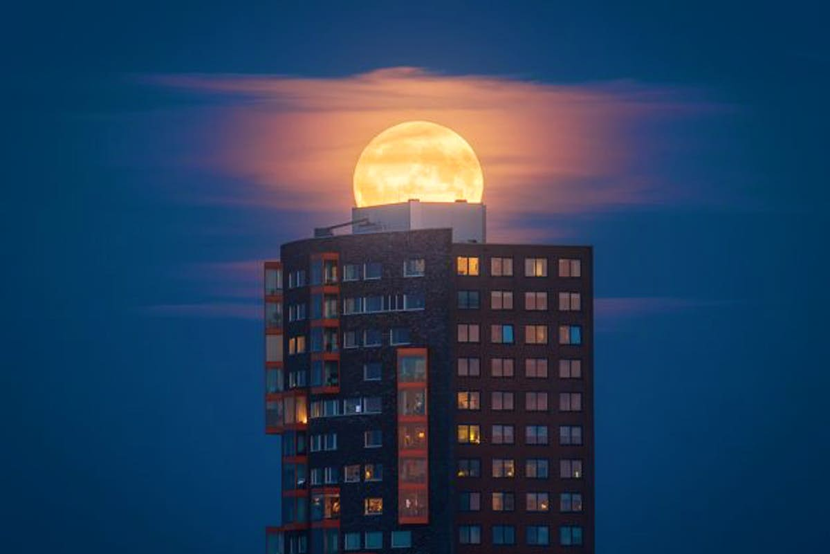 Astro photographer shares tips for capturing the forthcoming supermoon of the century - Lonely Planet