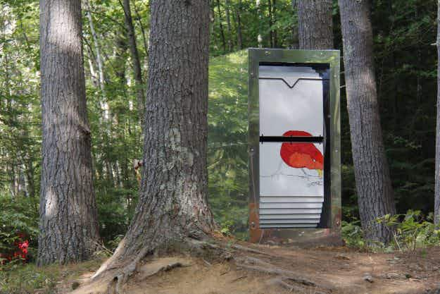Giant flipbooks in this New Hampshire forest are blowing peoples' minds