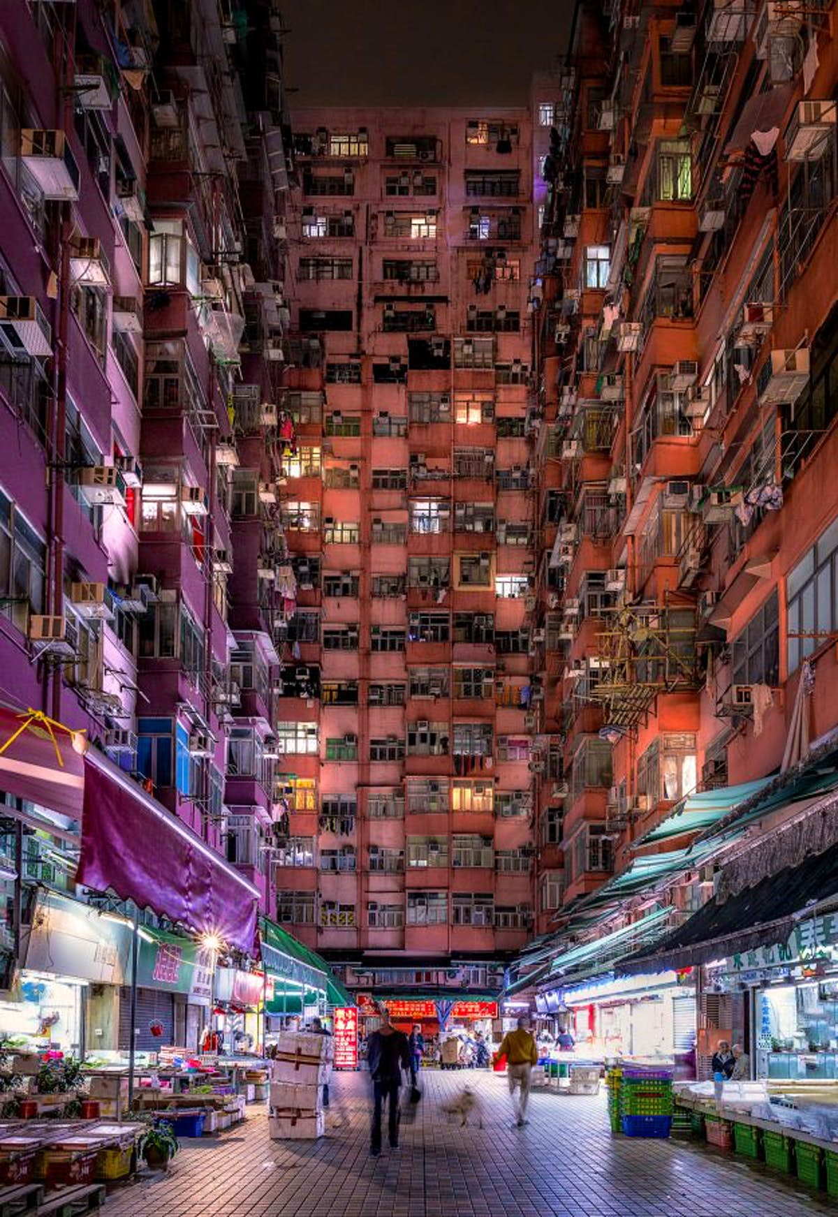 Photographer shares stunning pictures of Hong Kong inspired by Ghost in the Shell anime - Lonely Planet