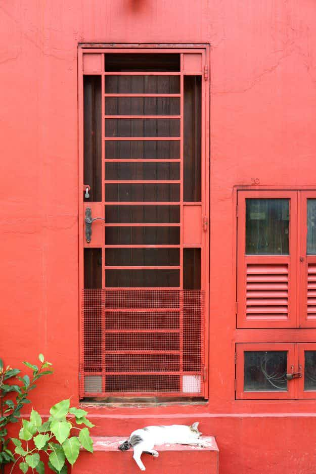 One photographer visited the back alleys of Singapore to capture 'hidden doors'