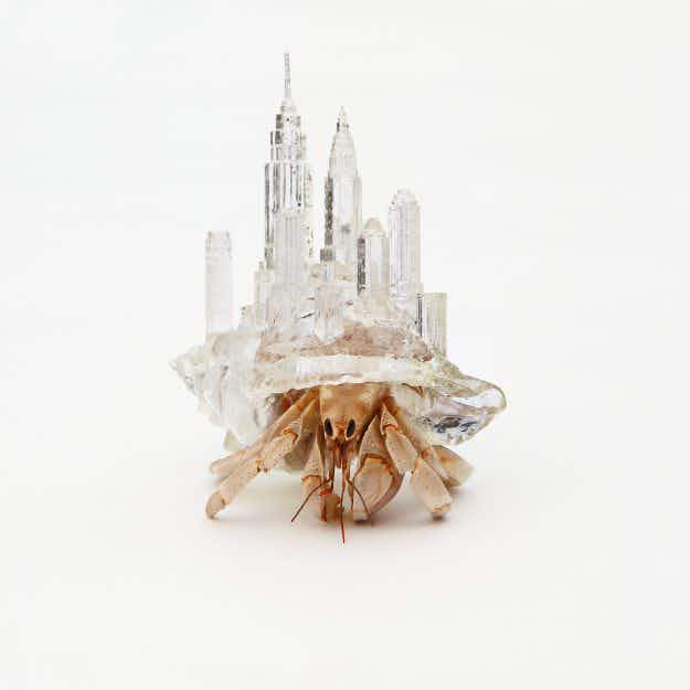 A Japanese artist has created incredible homes for hermit crabs based on architecture from around the world