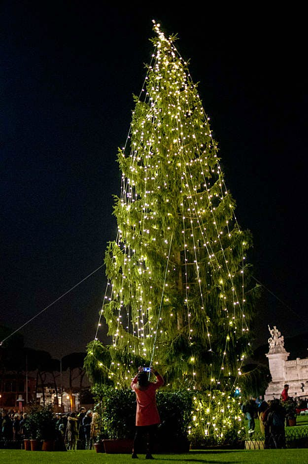 Ugly Christmas Tree.Rome S Ugly Christmas Tree Has Been Given A Make Over