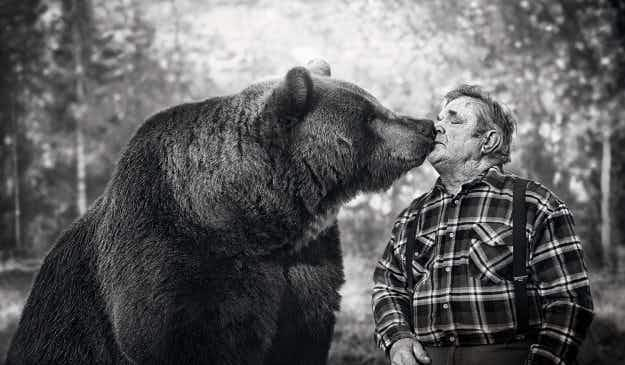 Juuso the bear is Finland's hottest new artist after a solo exhibition in Helsinki