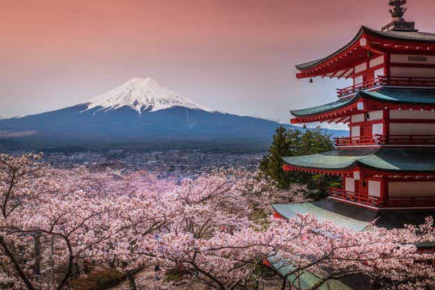 The first Japanese cherry blossom forecast of 2017 has been released