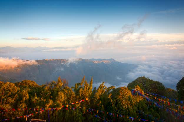 A new cycle-only path in India leads through the exquisite Darjeeling wildlife sanctuary