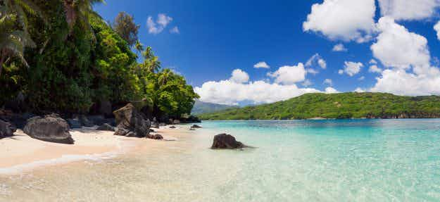 Vanuatu province aims for self-sufficiency by banning foreign food and going organic