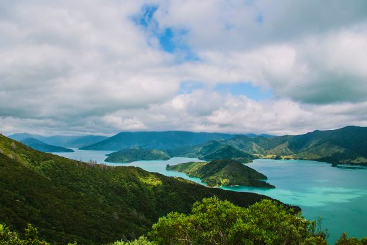 New Zealand's Marlborough region may tackle illegal freedom camping with a dedicated ranger - Lonely Planet