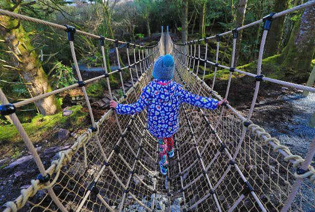 Skywalk: Ireland's longest rope bridge opens amid stunning scenery in south western Kerry