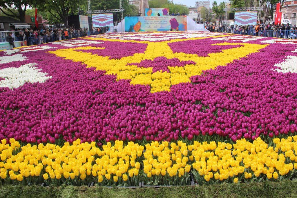 Discover the world's biggest tulip carpet in Turkey