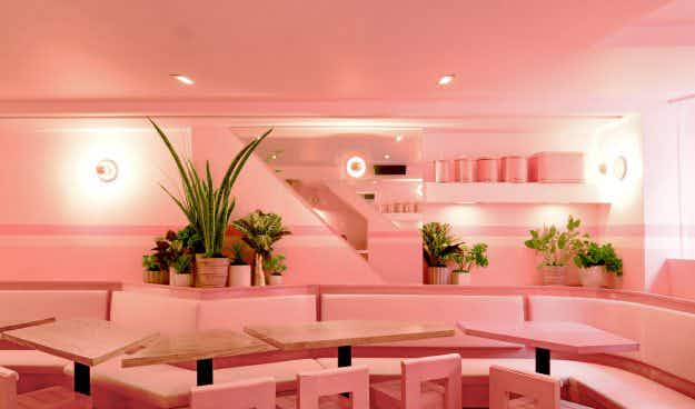 New Yorkers can't get enough of these 'millennial pink' restaurants