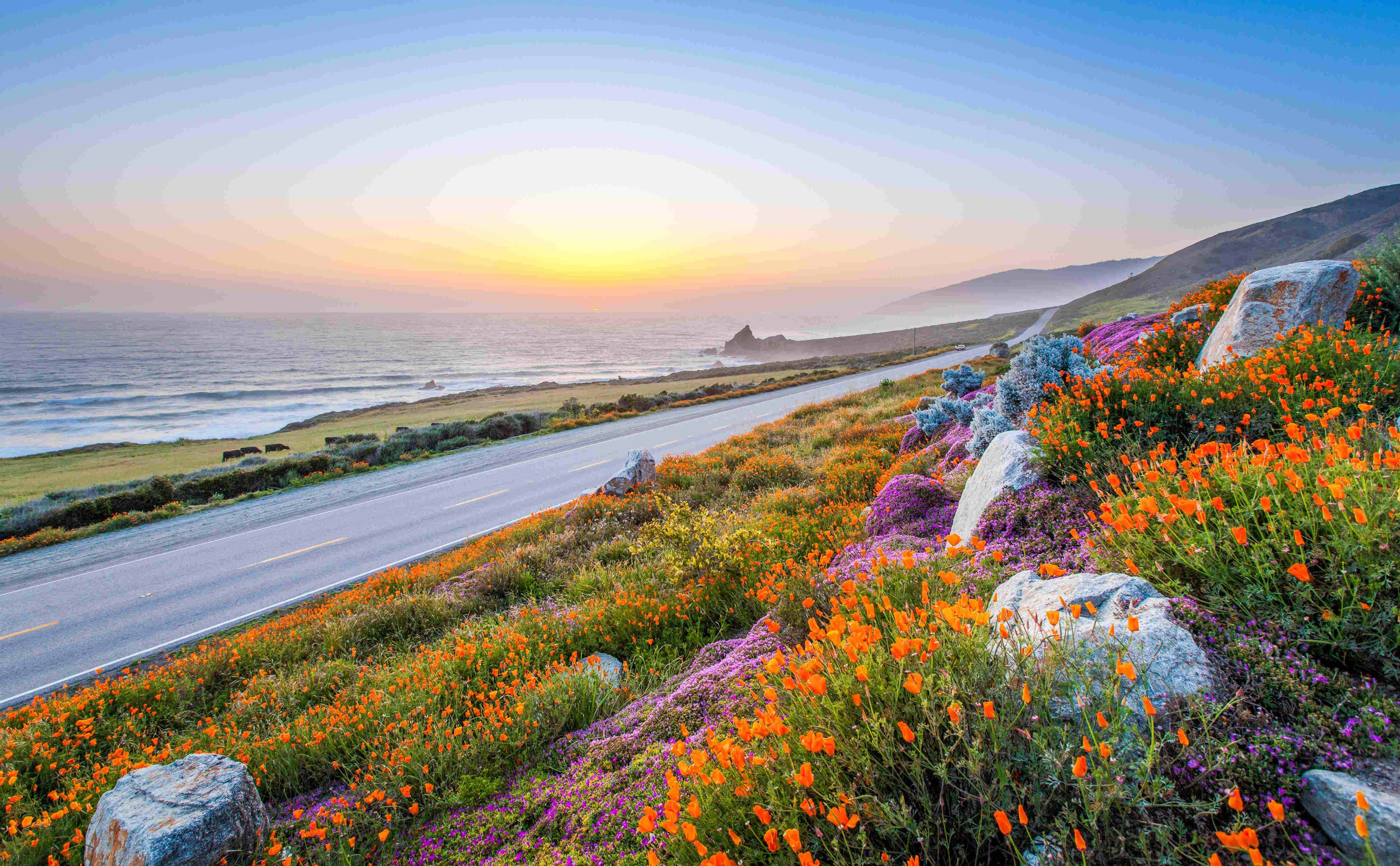 California's Big Sur: still stunning and open for business despite the landslides