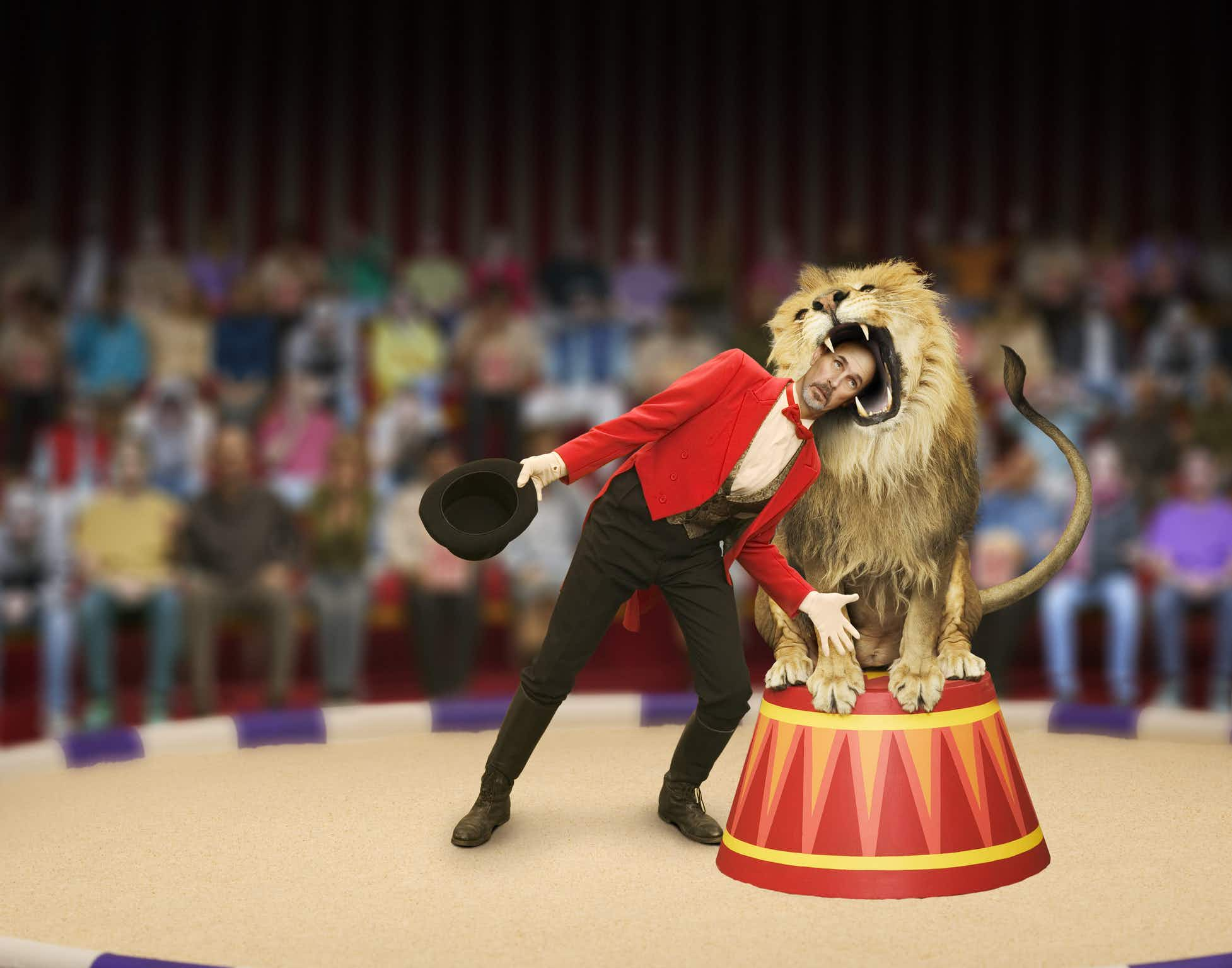 Slovakia to protect endangered species with a ban on wild animals in circuses from 2018