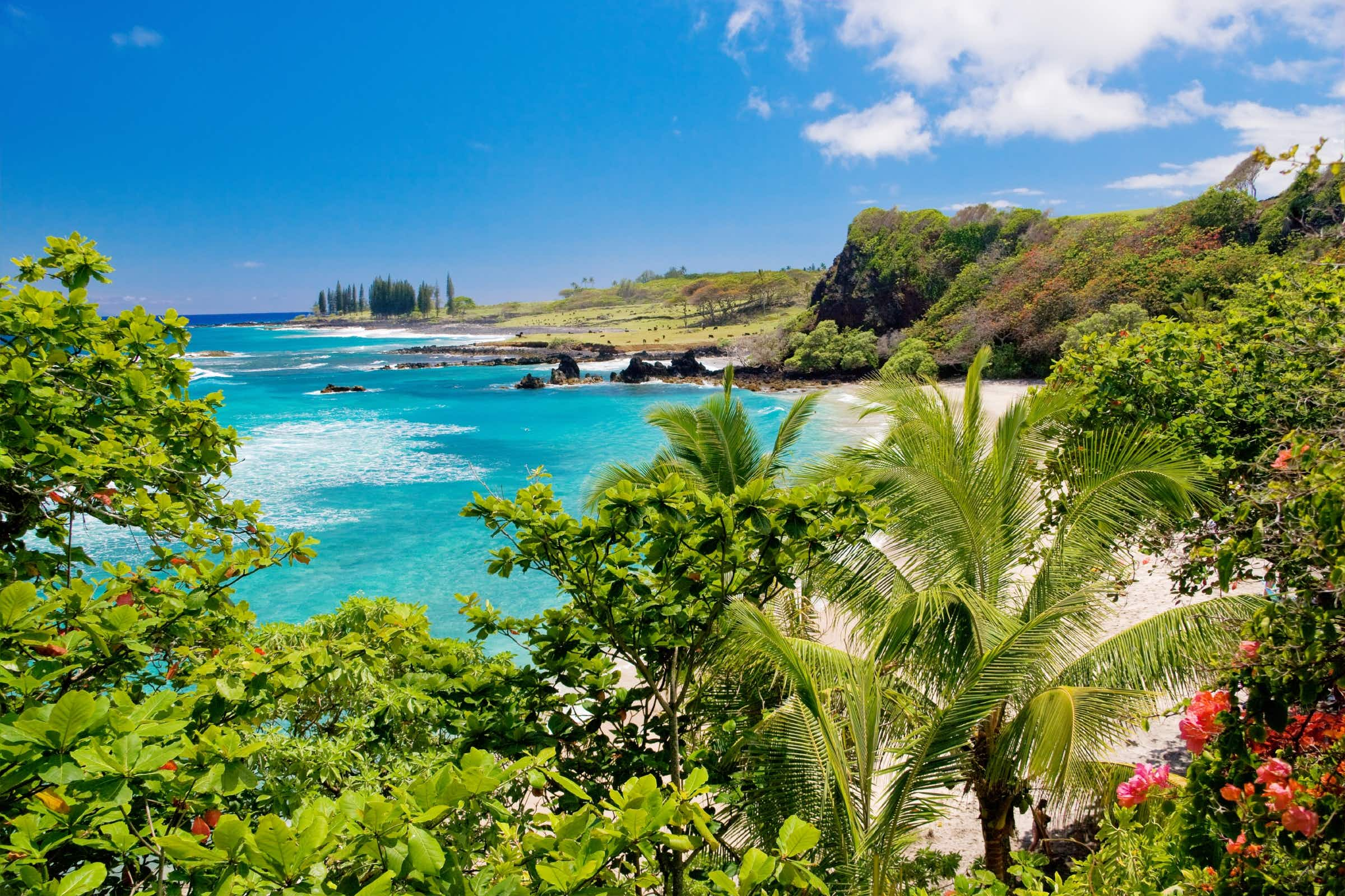 Tinder is sending a match to Maui after they spent three years messaging each other