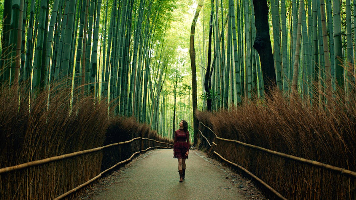 Food blogger captures her visit to a remote, mystical Japanese restaurant - Lonely Planet